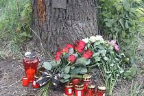 Místo tragické nehody u Chudenic.