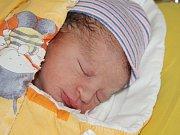 Martin Pelnář z Týnce (2990 g, 51 cm) se narodil v klatovské porodnici 19. května v 1.55 hodin. Rodiče Zuzana a Petr přivítali očekávaného syna na světě společně. Na brášku se těší Nikolka (4).