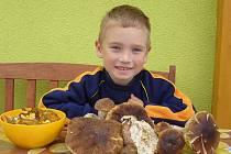 Pětiletý Tadeáš Krobot se svými houbařskými úlovky