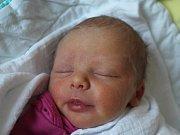 Magdaléna Mühlbacherová z Klatov (2670 g, 48 cm) uviděla světlo světa v klatovské porodnici 12. listopadu v 6.47 hodin. Rodiče Kateřina a Jan přivítali svojí prvorozenou dceru na svět společně.