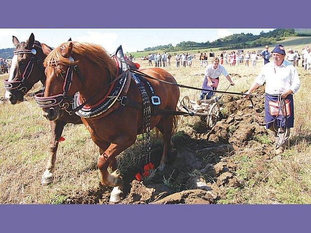 Soukromý zemědělec Ladislav Švec z Radostic nedaleko Velhartic se soutěže v orbě u Dolan zúčastnil se synem Janem.