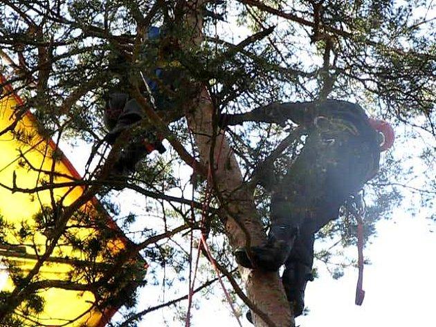 Ve výšce asi dvacet metrů skončila v sobotu kolem třinácté hodiny rogalistka, která s partou přátel létala poblíž Lhovic u Švihova.