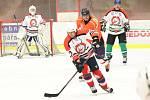 Hokejisté HC Čápi (na archivním snímku hráči v bílých dresech) zvítězili 7:2.