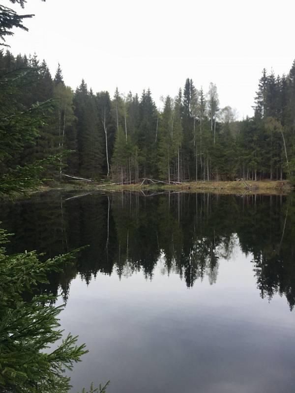 Přírodní koupaliště Žabáky.