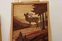 Výstava obrazů v Environmentálním centru v Železné Rudě.