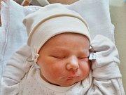 Daniel Šůs se narodil 15. října v 19.23 hodin mamince Haně a tatínkovi Martinovi z Plzně. Po příchodu na svět v plzeňské Fakultní nemocnici vážil bráška tříletého Davídka 3800 gramů a měřil 51 cm.