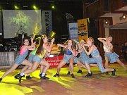 Rally ples v Klatovech 2017.