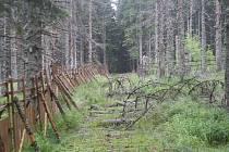 Lokalita Na Ztraceném u Modravy a její okolí, blokáda ekologických aktivistů