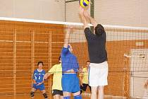 Volejbalový turnaj O pohár Alfastavu