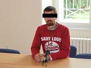 Radek C. z Klatov dostal za týrání malé holčičky nepodmíněný trest.