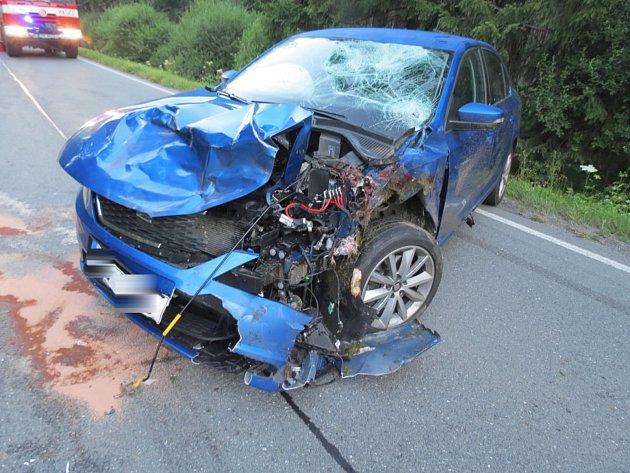 Střet auta sjelenem uHartmanic na Šumavě.
