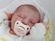 Kristýna Pintířová z Klatov (2630 g, 46 cm) se narodila v klatovské porodnici 5. června ve 14.02 hodin. Rodiče Klára a František přivítali očekávanou dceru na světě společně. Na sestřičku se těší Honzík (3).