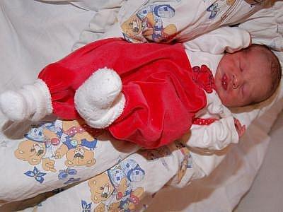 Prvním miminkem narozeným v roce 2011 v Plzeňském kraji je Terezka Rathová z Mlázov.