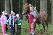 Lesní pedagogika v Kolinci.