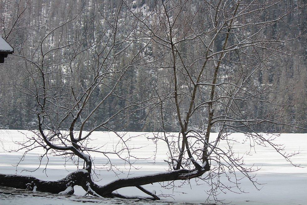 Šumava 27. února.