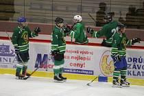 Hokejisté Tomahawku (na archivním snímku) si v 18. kole Šumavské ligy amatérského hokeje vyšlápli na favorizovaný výběr Vizi Auto. Se soupeřem se rozešli smírně 5:5.