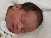 Beáta Holá z Lub (2360 g, 45 cm) uviděla světlo světa v klatovské porodnici 15. listopadu ve 14 hodin. Maminka Jana a tatínek Josef přivítali svoji dceru na svět společně. Ze sestřičky má radost Laurinka (7).