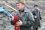 Výlov rybníku Dalovák u Čejkov na Klatovsku zpestřilo pasování rybářek.