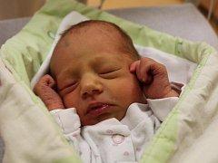 Evelína Šiplová z Malého Boru (2200 gramů) se narodila v klatovské porodnici 13. listopadu ve 22.47 hodin. Rodiče Ivona a Miroslav věděli dopředu, že jejich prvorozené miminko bude holčička.
