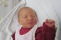 STELLA BABKOVÁze Sušice se narodila v klatovské porodnici 20. listopadu v 8.32 hodin (3330 g, 51 cm). Rodiče Hana a Lukáš věděli, že do jejich trojlístku přibude dcera. Tatínek podporoval maminku na porodním sále. Doma na sestřičku čeká Kateřina (16) a