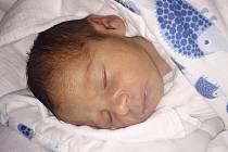 Fehmi Bočarov z Domažlic (3220 g, 51 cm)senarodil v klatovské porodnici 19. února v 19.00 hodin. Rodiče Lucie a Alexandar Petrov Madzharov věděli, že jejich první dítě bude chlapeček.