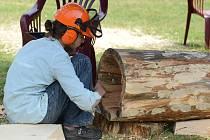 V Nýrsku se konalo první dřevosochání