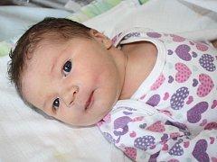 Nikol Řezníčková z Klatov (4020 gramů, 55 cm) se narodila v klatovské porodnici 17. června v 18.40 hodin. Rodiče Barbora a Jindřich přivítali očekávanou prvorozenou dcerku na svět společně.