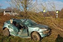 Řidič vyrval ze země strom i s kořeny