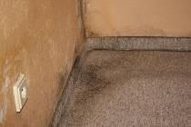 Plísně a praskliny v bytech v Klatovech