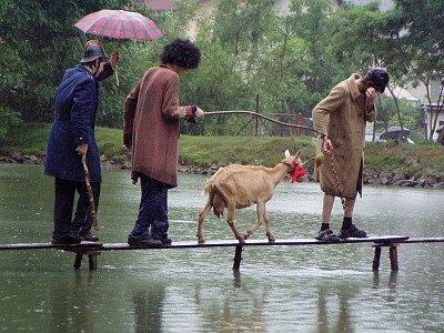 Kolečkové brusle, lyže, rudlík nebo koloběžka. Nejrozmanitější vozítka použili účastníci čtvrtého ročníku Bolešinské lávky k tomu, aby se suchou nohou dostali na druhý konec rybníka a poté ještě nazpět.
