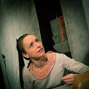 Představení Neumím jinak než láskou v hlavní roli s Tatianou Vilhelmovou.