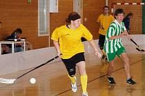 Fanklub Cup 2010