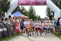 V kraji přibylo další místo. Olympijský běh zavítá také do Sušice.