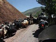 Expedice Kyrgyzstán 2010 v Uzbekistánu