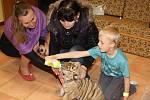Děti z Klokánku poznaly tygříka z cirkusu Jo - Joo