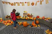 Výstava dýní a tykví v Klatovech.