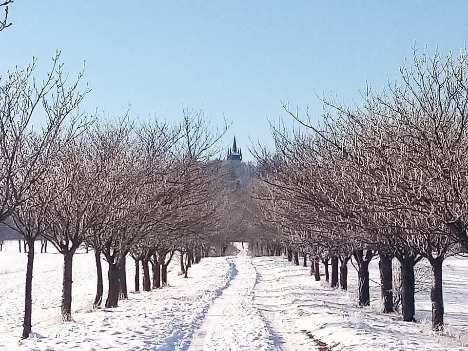 Zima v Chudenicích.
