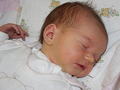 Lilien Krausová z Běšin (3570 gramů, 50 cm) se narodila v klatovské porodnici 2. ledna ve 12.50 hodin. Rodiče Hana a Petr přivítali očekávanou dcerku na svět společně. Ze sestřičky má radost i Ellen (4).