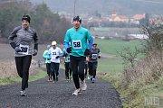 Dolanského závodu na 5 km se zúčastnilo přes třicet běžců a běžkyň, kteří se museli vypořádat nejen s mrazivým počasí, ale také s mírným stoupáním.