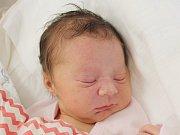 Blanka Presslová z Lukavice (3190 g, 49 cm) se narodila v klatovské porodnici 10. prosince v 5.43 hodin. Rodiče Blanka a Vojtěch přivítali  dceru na svět společně.  Ze sestřičky má radost bráška Matyáš (5).