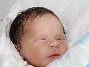 Alžběta Havlíková ze Sušice (2760 g, 47 cm)  se narodila v klatovské porodnici 8. března v 8.32 hodin. Rodiče Renata a František přivítali svoji dceru na svět společně.