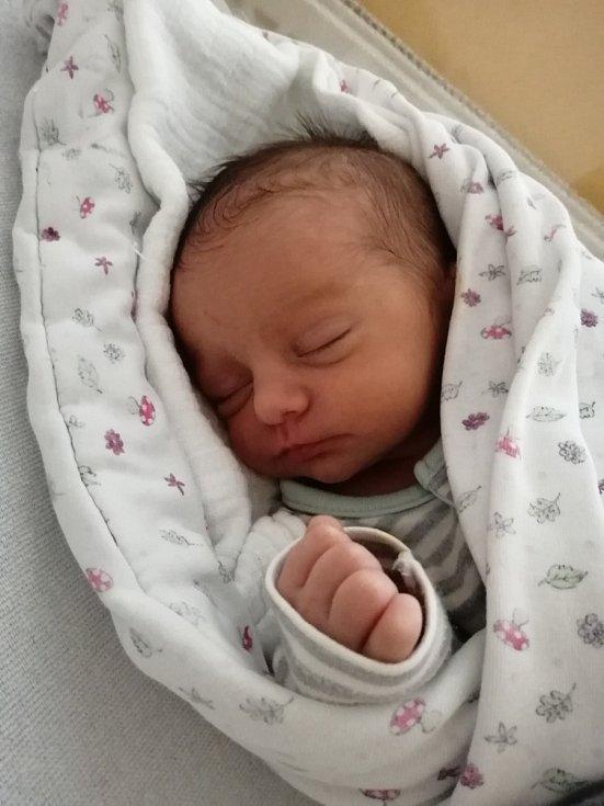 Sára Patočková zDešenic se narodila vklatovské porodnici 30. června v8:24 hodin (2300 g) rodičům Nikole a Vaškovi. Sára vykoukla na svět už v37. týdnu těhotenství císařským řezem, takže tatínek u porodu nebyl, ale přál si holčičku. Pohlaví rodiče věd