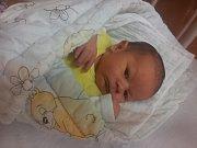 Matěj Příbek z Poborovic (3710 g) se narodil v klatovské porodnici 3. listopadu v 8.44 hodin. Z narození syna se radují rodiče Eva a Stanislav. Na brášku doma čeká Sárinka (5).