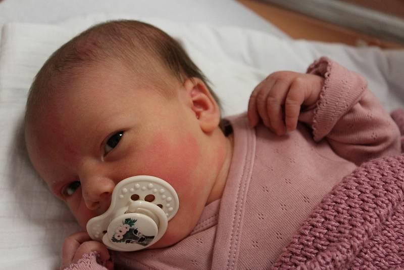 Ema Hanusová ze Sušice (3280 g, 48 cm) se narodila vklatovské porodnici 3. října ve 21:20 hodin. Rodiče Ladislava a Daniel věděli dopředu, že se jim narodí holčička.