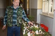 Výstava hub v Sušici