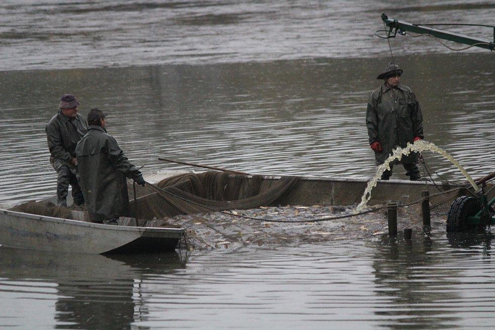 Výlov rybníka Dalovák.
