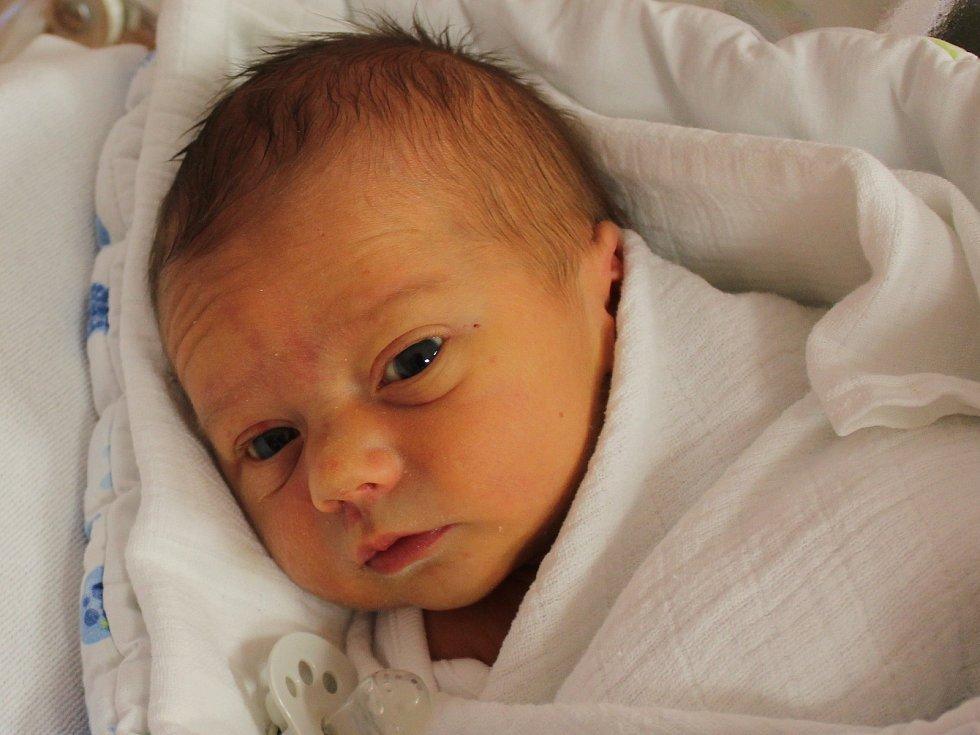 Antonín Levička zHolýšova se narodil vklatovské porodnici 7. února v0.56 hodin (2910 g, 50 cm). Rodiče Ivana a Tomáš dopředu věděli, že jejich prvorozeným miminkem bude chlapeček.