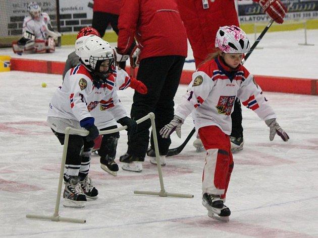 Akce týden hokeje v Klatovech 2017
