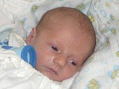 Hance a Tomášovi  Prexlovým ze Zavlekova se narodil 19. ledna v 8.33 hodin předčasně syn Štěpánek. Vážil 2280 gramů a měřil 46 cm. Doma se na něj těšil bráška Tomášek (3). Rodiče by chtěli poděkovat lékařům a sestrám z dětského oddělení nedonošených dětí