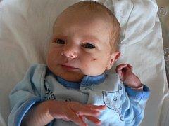 Ke tříleté Ele přibyla Martině a Martinovi Pojarovým z Plzně druhá dcera Linda (2610 gramů, 49 cm). Narodila se v plzeňské FN 5. ledna v 19.18 hodin a těší se na ni prarodiče z Klatov.